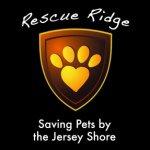 SavingPetsByTheJerseyShore Profile Image