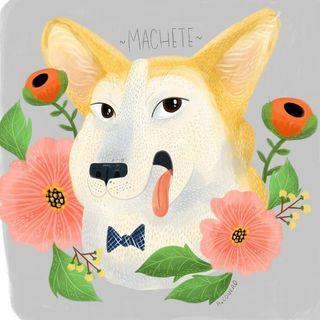Machete Profile Image
