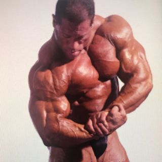 Dave Palumbo Profile Image
