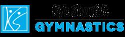 Kyle Shewfelt gymnastics club
