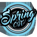 Spring CDT logo