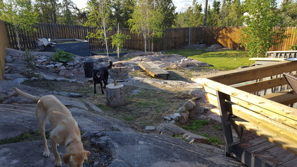 20160625_194548 at 171 Magrum Crescent, Range Lake, Yellowknife