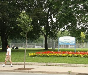 Photo courtesy of More Moss Park.