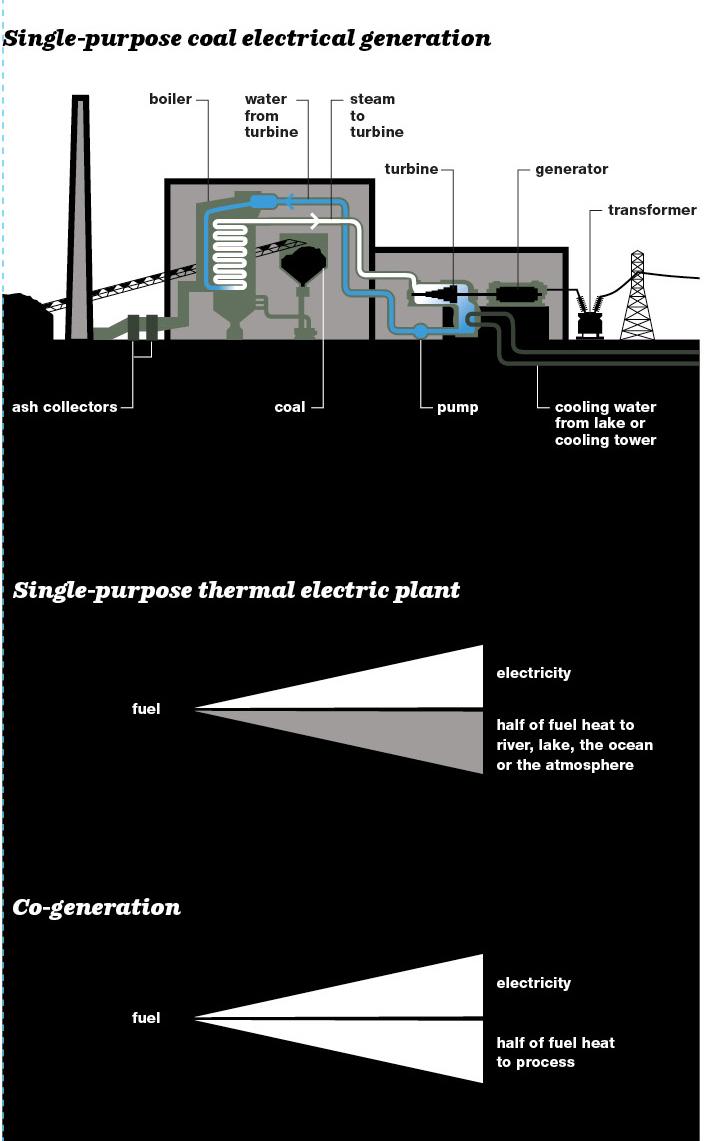 Single-purpose coal electrical generation