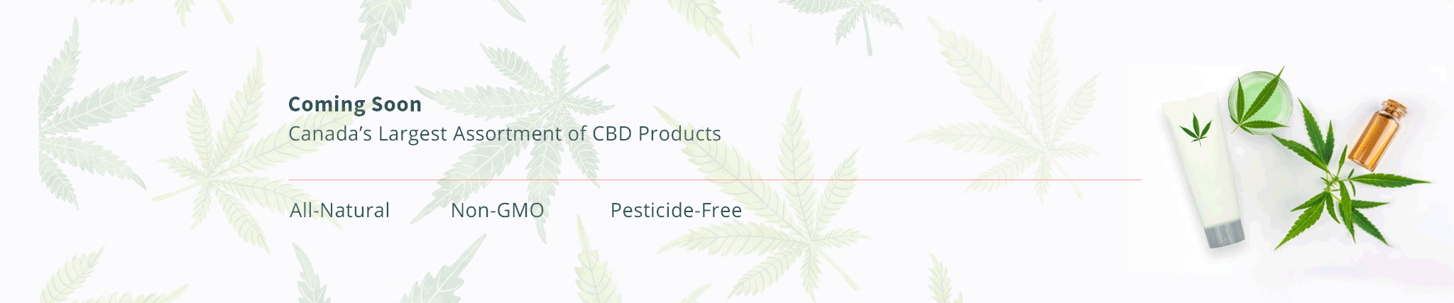 CBD Coming Soon