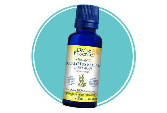 Divine Essence Organic Eucalyptus Radiata Essential Oil