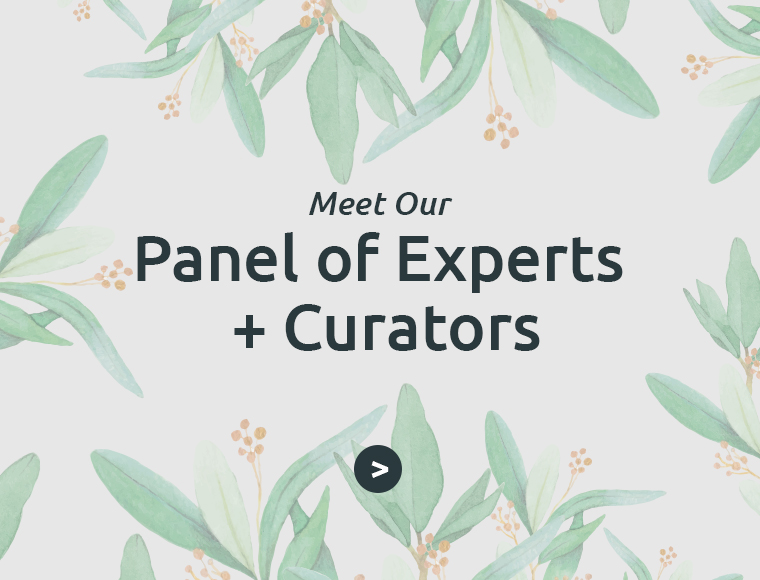Meet Our Panel Experts + Curators