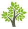 Seniors Zen logo