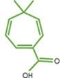 Xylon Biotechnologies logo