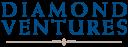 Diamond Ventures,Inc. logo