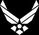 355th Medical Group logo