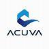 Aneuvas Technologies,Inc. logo