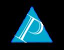 Palladium IT Advisors LLC logo