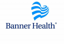 Banner Research logo