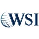 WSI-Optimized Web Solutions logo