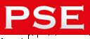 Predictive Solutions Engineering,LLC logo