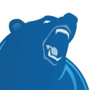 Big Bear Software logo