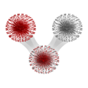 Network Immunology logo