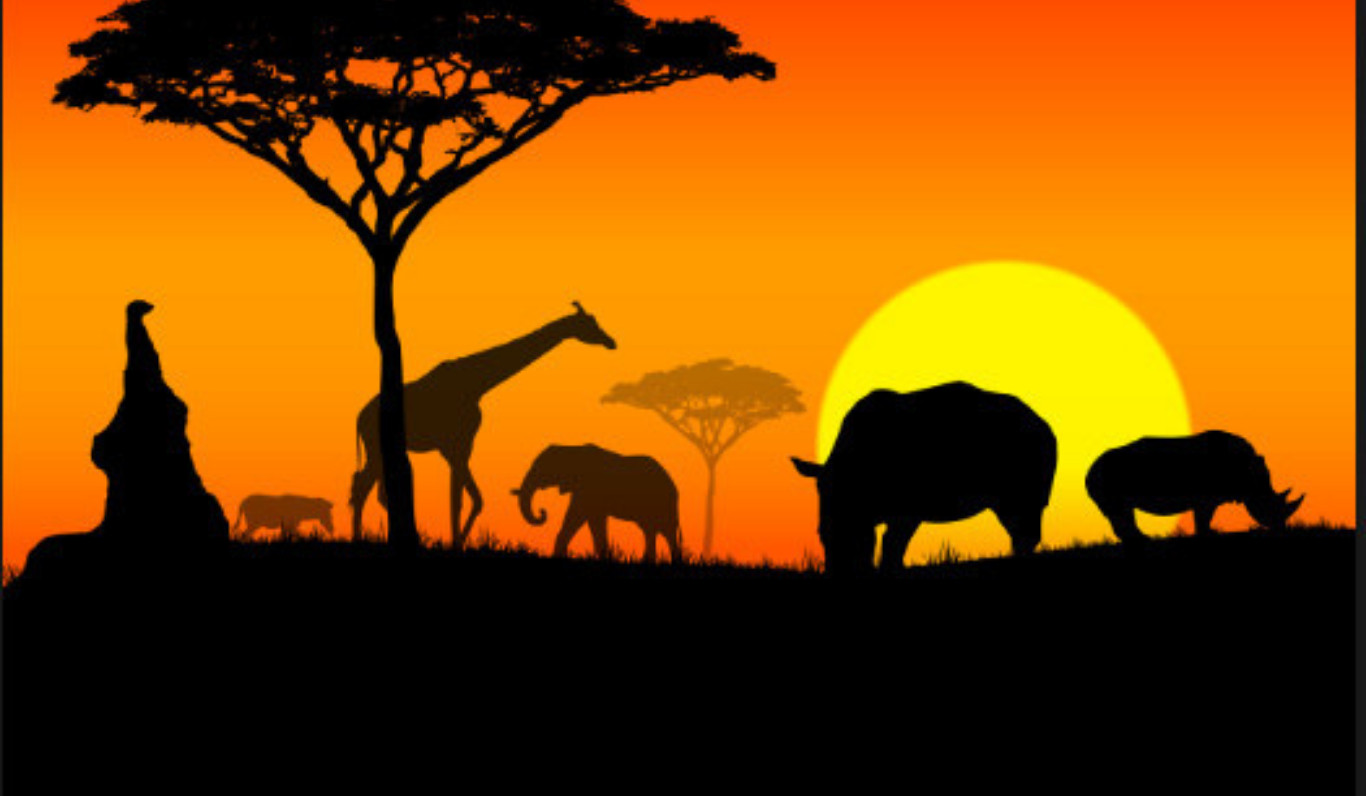 Planète Afrique