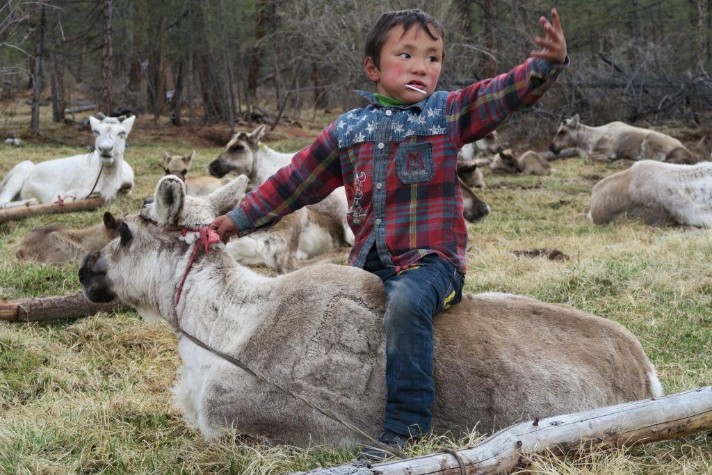 La Mongolie nature sauvage, ce jeudi 17 septembre 2019, de 10 à 11 heures - Ici et Ailleurs