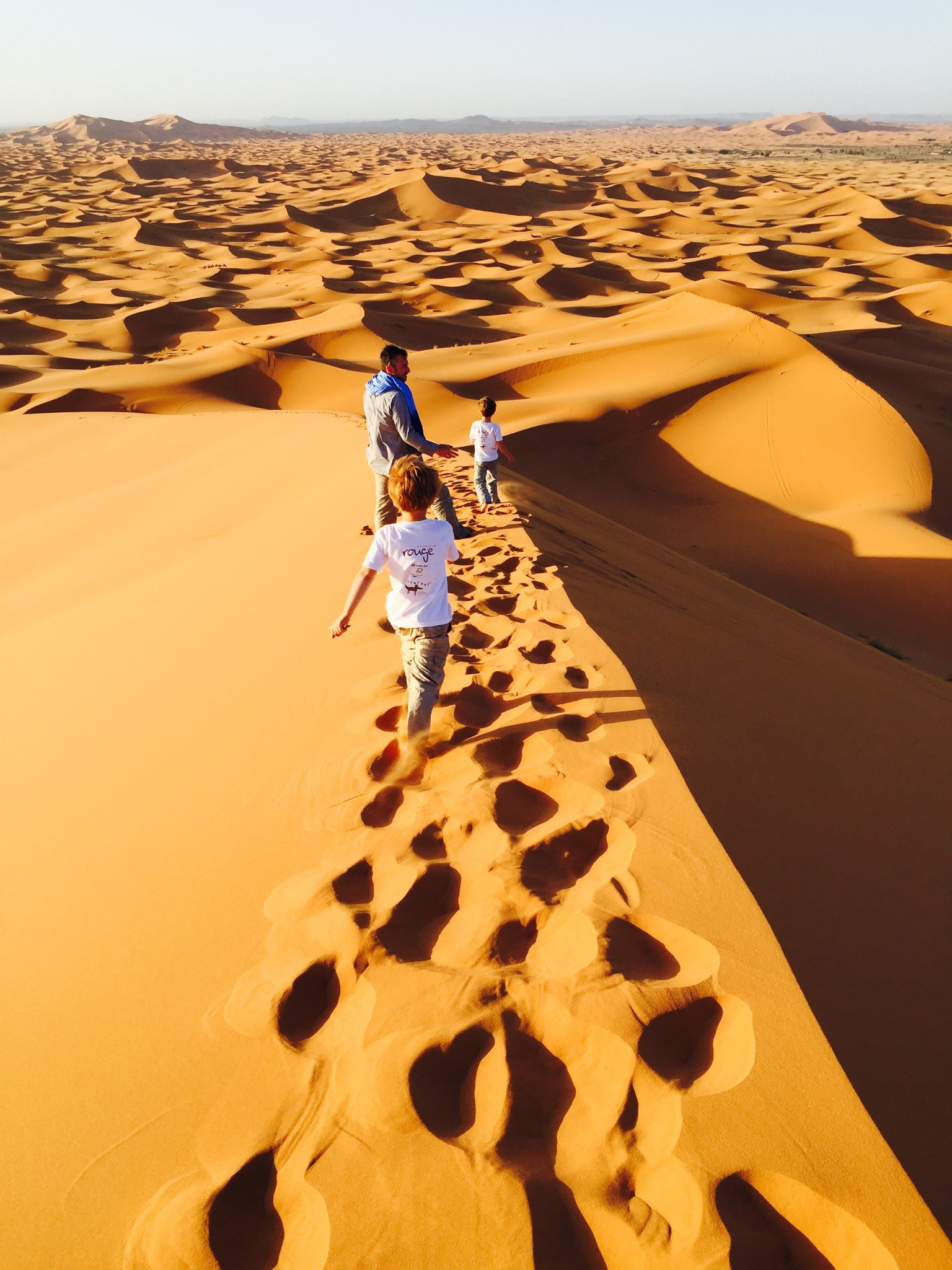 Les Petits Loups au Maroc, ce jeudi 20 mai 2021, de 10 à 11 heures, à l'émission Ici et ailleurs