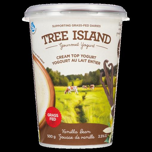 Picture of Cream Top Yogurt - Vanilla Bean - 500 g