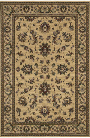 Ari Collection 4X6 Ivory Traditional Area Rug