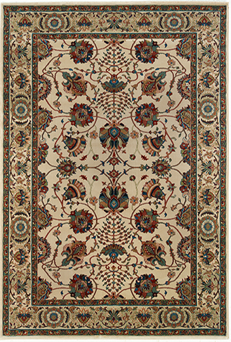 Ari Collection 6X9 Ivory Traditional Area Rug