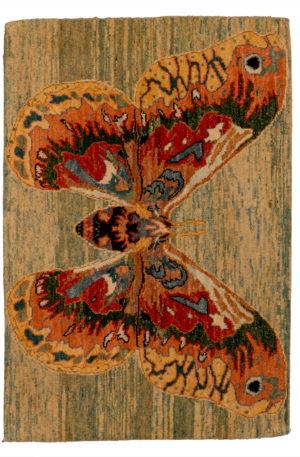 Contemporary 2X3 Multi Color Wool Area Rug