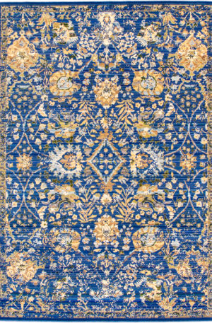 Transitional Chinese 5X8 Blue Area Rug