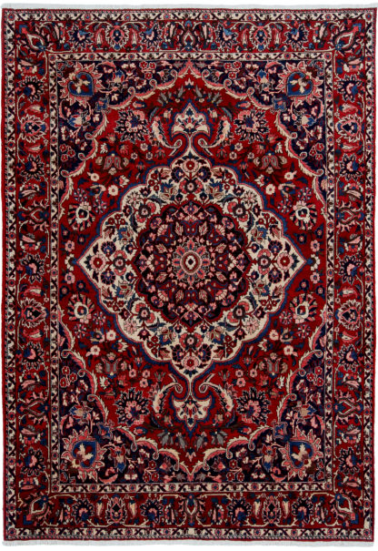 Persian Bakhtiari 7'x10' Red Blue Area Rug