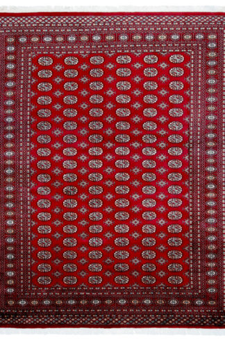 Pakistani Bokhara Design 8x10 Red Wool Area Rug