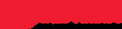 Shneir Logo