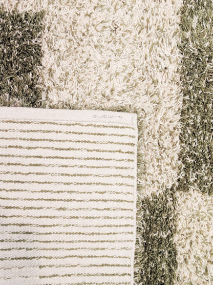 Contemporary Shag 4x6 Green Ivory Wool Area Rug