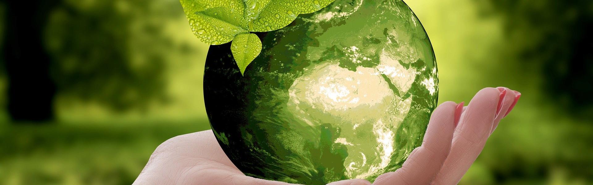 Gerenciamento de Resíduos Classes I, IIA e IIB.- DDN Gestão de resíduos - Reciclagem de Lâmpadas Fluorescentes e LED em Balneário Camboriú, Camboriú, Itajaí, Itapema e região.