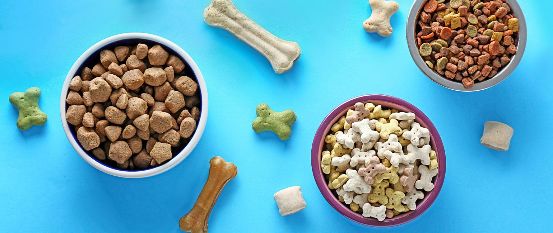 Pet food on blue background