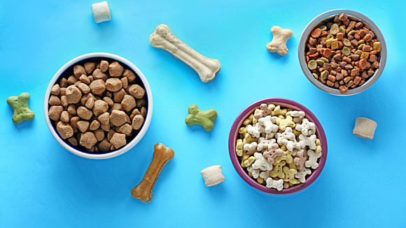 Pet food on blue background