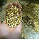 A grain mixture prior to the bagging station at the Feed Mill in Moncton, NB