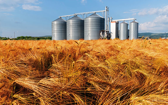 Wheat Field with Silos