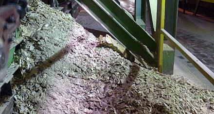 Wood Chips Vacuum