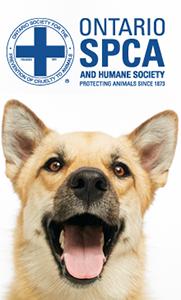 Ontario spca vertical charity banner2