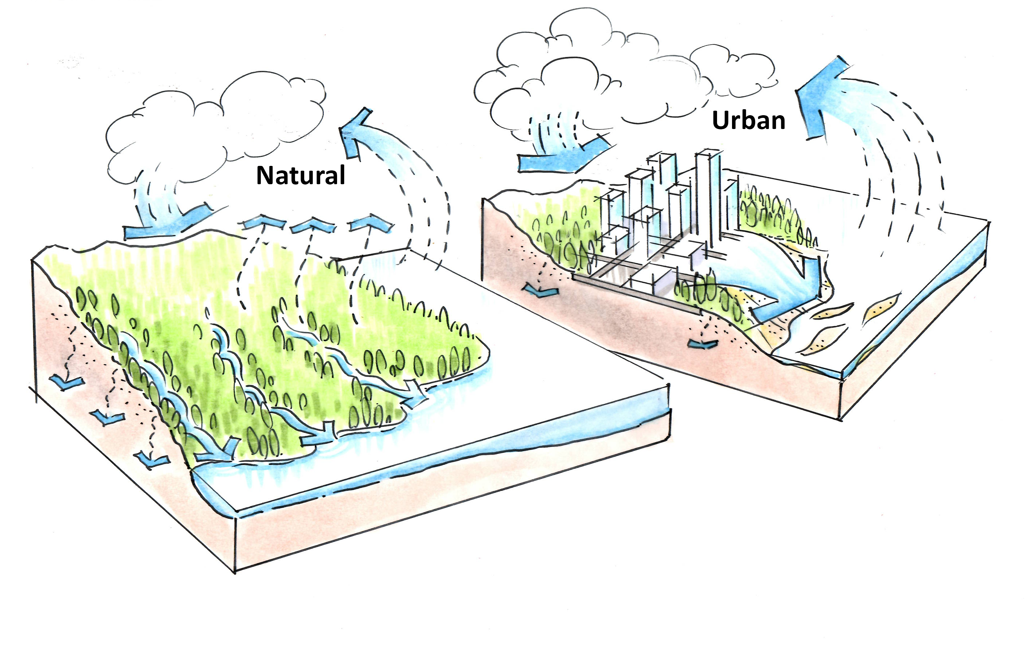 a drawing of the natural and urban watercycle