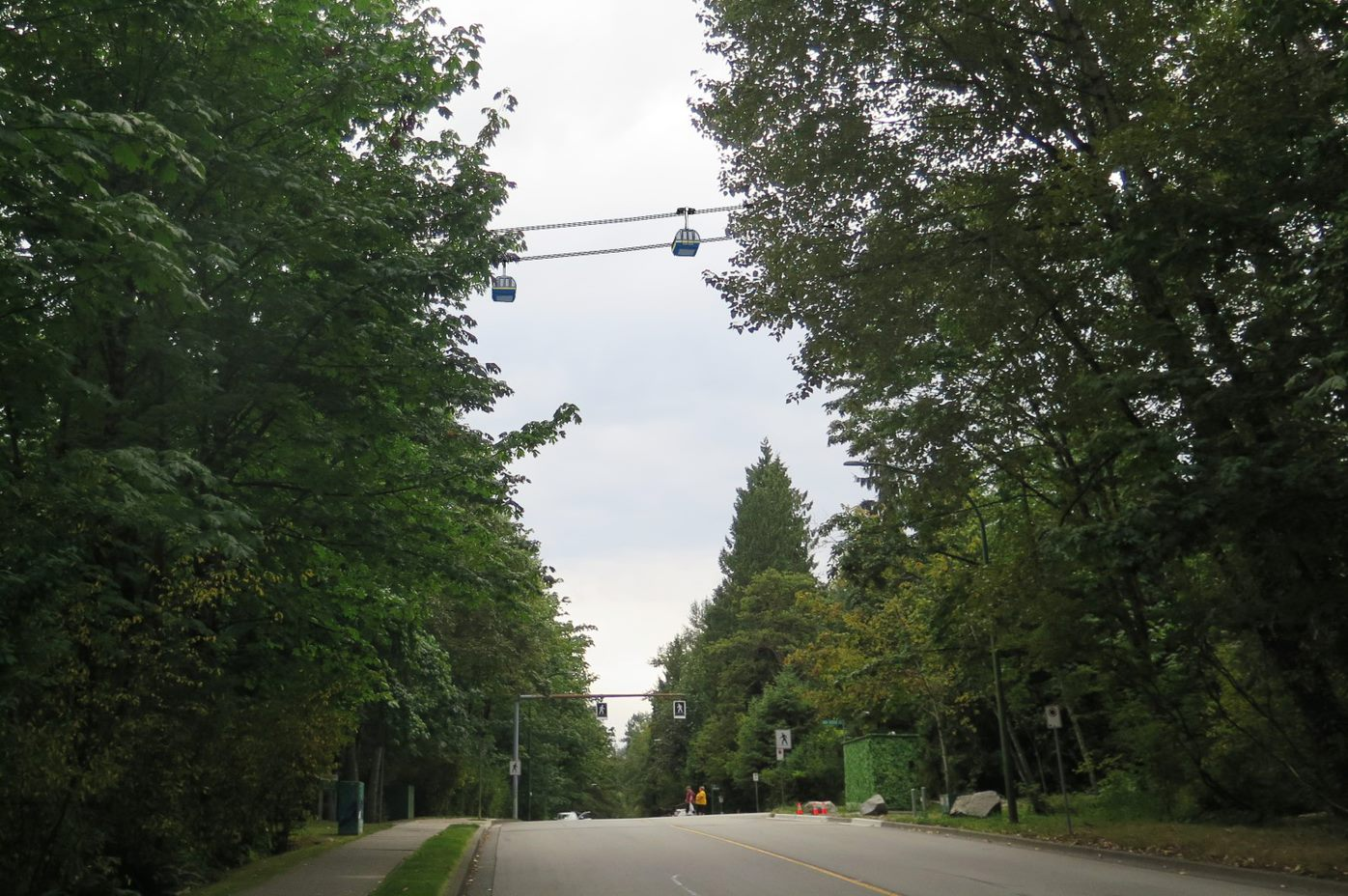 A conceptual rendering of gondola lines in Forest Grove near Ash Grove Crescent