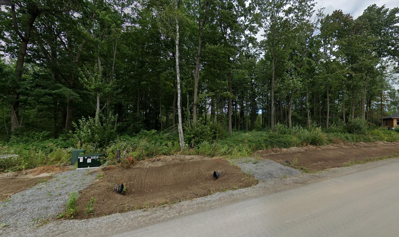 Image du parc Shoreway Woods depuis la promenade Shoreway.