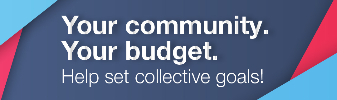 Your community. Your budget. Help set collective goals!