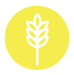 Econonmic Development Symbol, Yellow coloured circle with a piece of grain inside