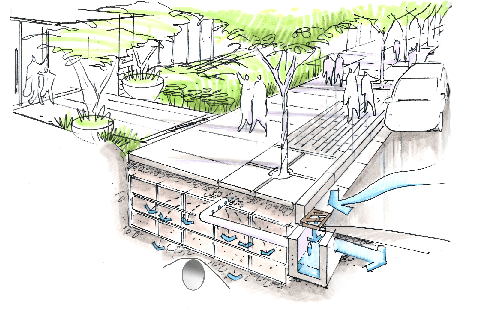 Drawing of a rainwater tree trench