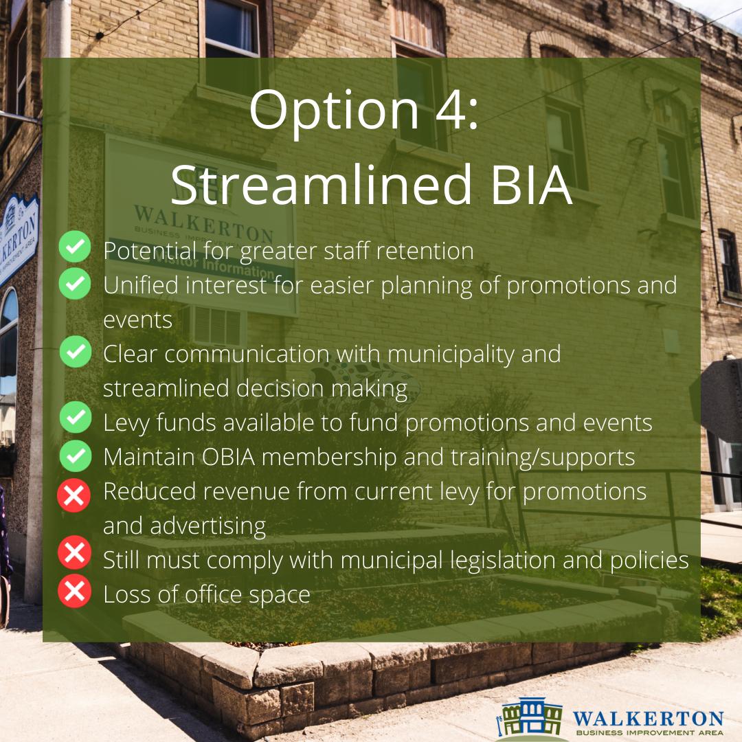 Option 4: Streamlined BIA