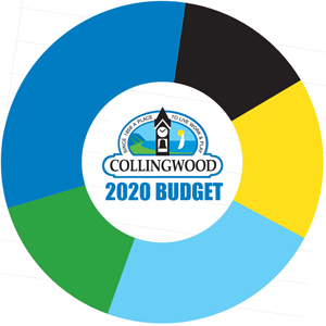 2020 budget %281%29