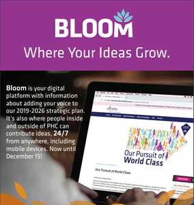 Posters bloom